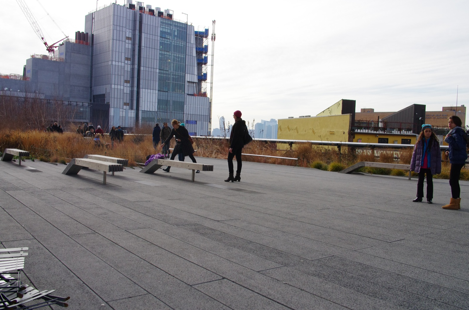 zelda makes her own slide on the high line