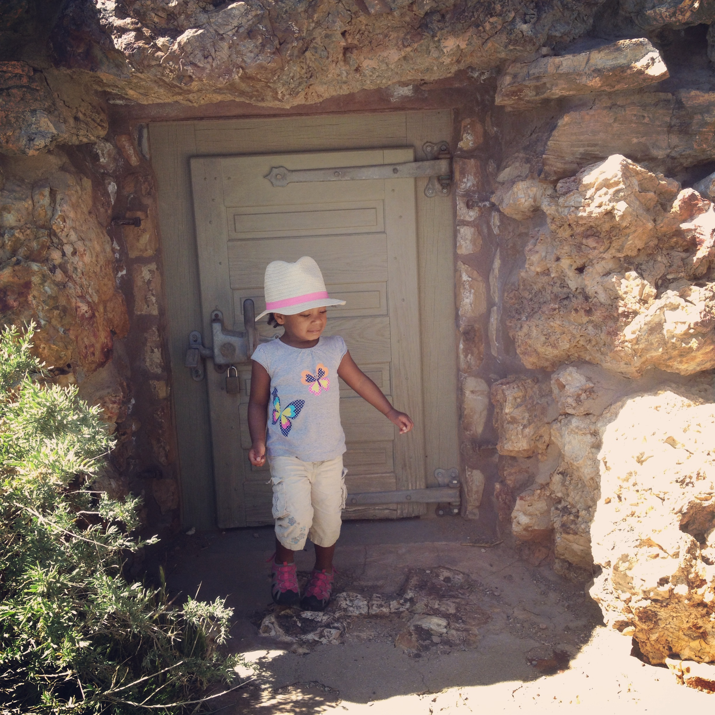 tiny explorer at the tower at the grand canyon.